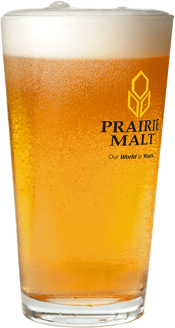 Pint of Amber Color Beer in Prairie Malt labeled glass